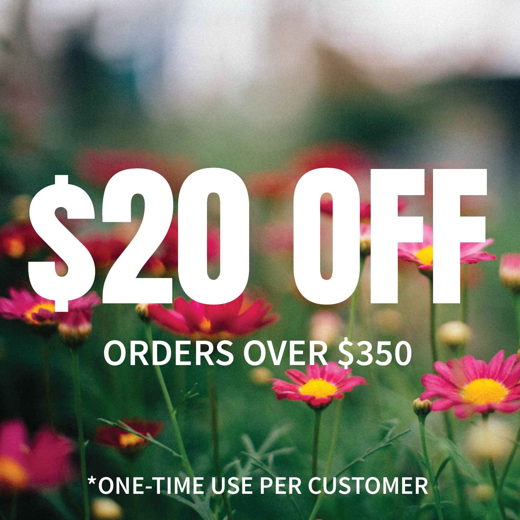 $20 Off Any Order Over $350