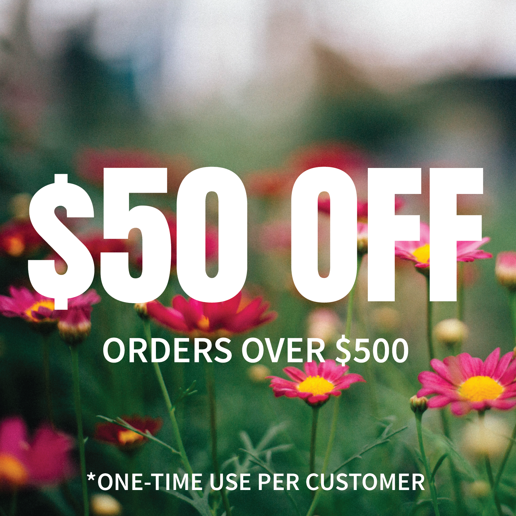 $50 Off Any Order Over $500